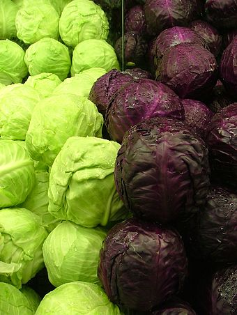 340px-Cabbages_Green_and_Purple_2120px