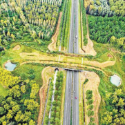 You see What happened to Eco-Ducts made Across Highways