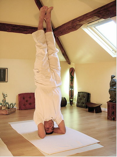 yog and yoga methods