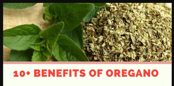 Surprising Health and Beauty Benefits of Oregano