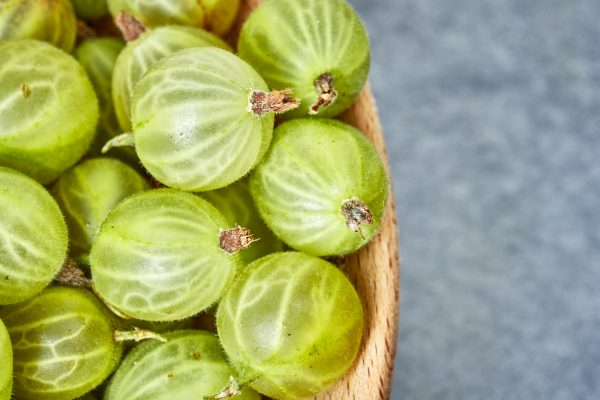 Close up picture of ripe gooseberries.